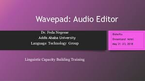 WavePad Sound Editor 9.34 Crack With Product Key Free Download 2019